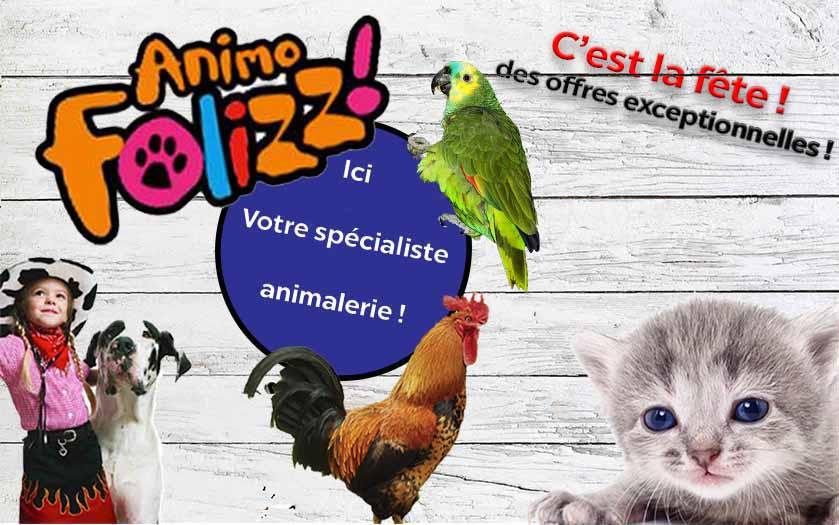 Animofolizz la fête des animaux